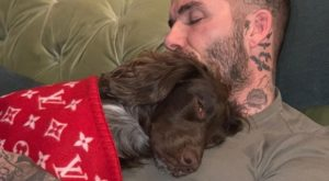 4234808_1057_david_beckham_cane_coperta_louis_vuitton